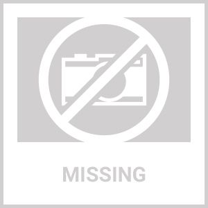 Ariel Platinum Steam Shower DZ972F8W 59x32x87.4