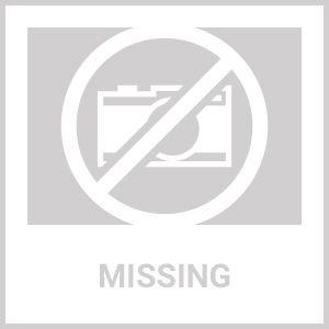 Ariel Platinum Steam Shower DZ972F8 59x32x87.4